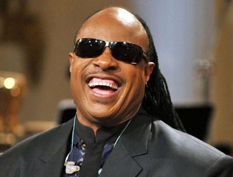 Stevie Wonder: Singer